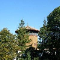 Соколиная башня :: Александр Рыжов
