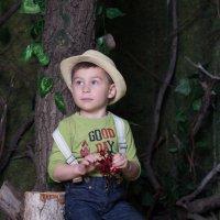 Мальчик на пеньке в лесу :: Valentina Zaytseva