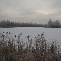 "из серии ""серебро"" :: Владимир Носов"