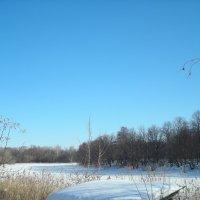 Прогулка вдоль озера солнечным днем :: марина ковшова
