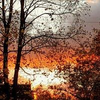 Осенний вечер :: Tatjana