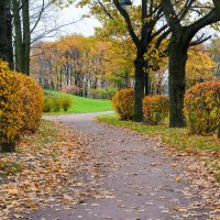 Осенний парк. :: Игорь
