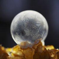 Мыльный пузырь на морозе. :: Olga Kramoreva