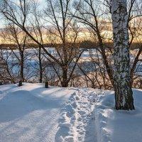 Зима. :: Александр Тулупов