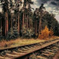А вокруг тишина, а вокруг ни души... :: Ирина Falcone
