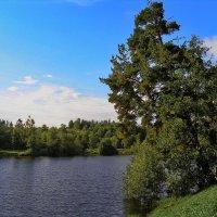 Красный пруд. Ораниенбаум (Ломоносов). :: Владимир Ильич Батарин
