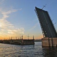 разведение Троицкого моста :: Елена