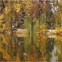 Наш город целует осень. :: Андрей Козлов