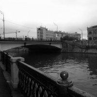 Москва :: tgtyjdrf