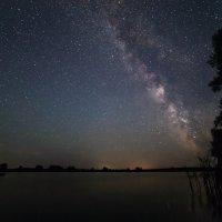 Ночь на озёре :: Olga Lakeeva
