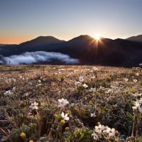 Рассвет в горах :: Olga Lakeeva