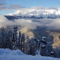 Декабрьский день в горах :: Виолетта