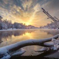 За берега зимние... :: Roman Lunin