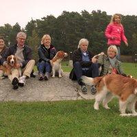 на островке собачьего счастья :: liudmila drake