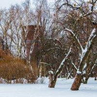 Башня. :: Владимир Безбородов