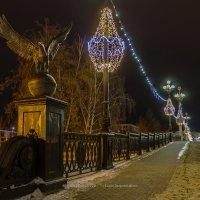 Александровский мост, Орел :: Roman Dergunov