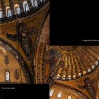 золотые спираль и сечение :: liudmila drake