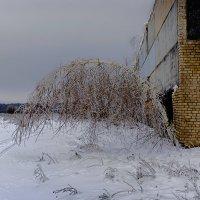 Зимой... :: Александр Кудров