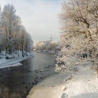 Зимний пригород 12 :: Виталий