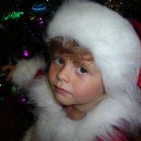 Маленький Сантёныш. Здесь вы можете найти новогоднее поздравление, составленное всеми вместе. :: Лара Гамильтон