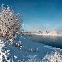 Морозный день начала зимы :: Анатолий Иргл