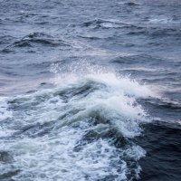 Шторм в Белом море :: Алексей Горский