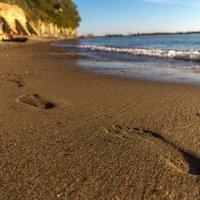 следы на песке :: Алексей Лейба