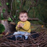 Мальчик сидит в гнезде :: Valentina Zaytseva