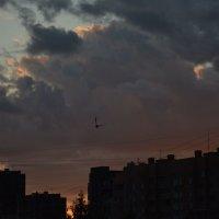 Ночное небо :: Наталия П