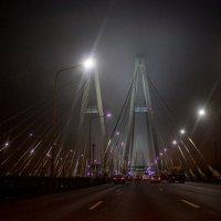 Туман :: dmitriy-vdv