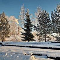 Забытых труб холодное молчание :: Валерий Талашов