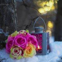 Закат рассыпал в тучах свои розы... :: Галина Стрельченя