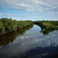 Протока Березовая. :: Schbrukunow Gennadi