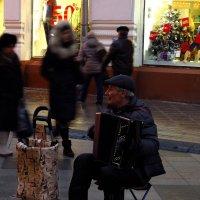 Музыкант должен быть среди народа :: Андрей Лукьянов