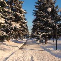 зима в городе :: Ирина ***