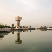 Зеленый остров в Кувейте :: Kristina Suvorova