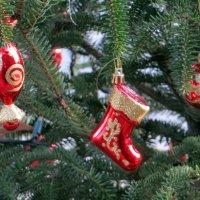 С Рождеством Христовым! :: Наталья Джикидзе (Берёзина)