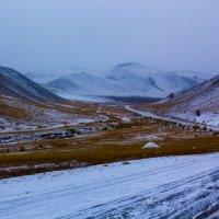 Дорога, снег, метель :: Анатолий Иргл