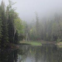Плыл над озером туман. :: MaOla ***