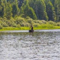 Местный рыбак :: Надежда Чернышева
