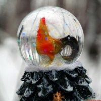 В предвкушении волшебства.. :: Андрей Заломленков