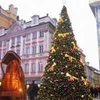 Прага в преддверии Рождества :: татьяна
