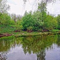 весенний подмосковный пейзаж :: megaden774