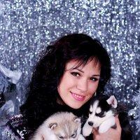 Новогодняя сказка с малышами хаски :: Светлана Белкина
