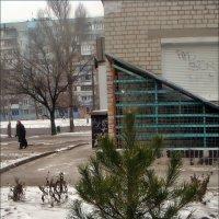 В Запорожье 22 декабря 2016 года :: Нина Корешкова