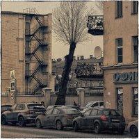 My magic Petersburg_02322 :: Станислав Лебединский