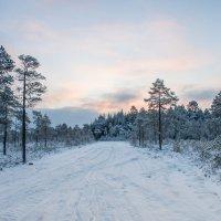 Рассвет над зимником :: Яна Старковская
