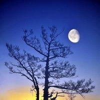 Рассвет над Малым морем :: Дмитрий Шматков