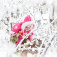 Зимний день :: Kris Vinnikova