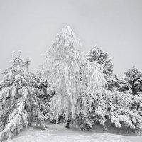 Зима на плато :: Николай Ковтун
